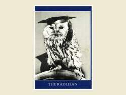 The Radleian 1985