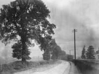 West Barnes Lane