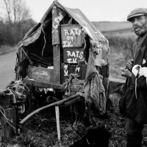Fred Able's one-man circus wagon was pulled by two donkeys, held fifty performing mice, fifteen rats, two dogs and a performing pigeon. He was featured on a TV programme hence 'Rats on TV'.