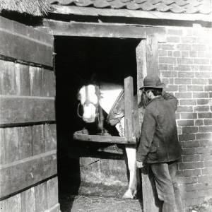 Door to the cider mill house, with horse in shafts of mill
