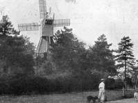 Wimbledon windmill and delivery wagons, Wimbledon Common