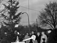 Rotary Goodwill Christmas tree