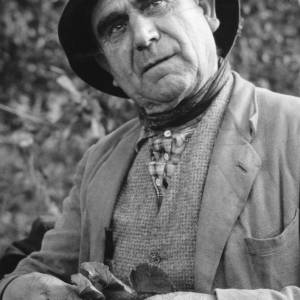 Gypsy Man, Amos Hoskins, Picking Hops in Herefordshire