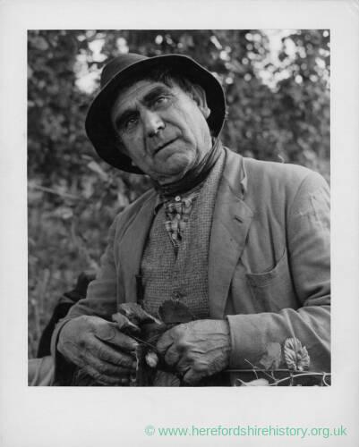 696 - Portrait of an older man wearing a hat holding hop spray