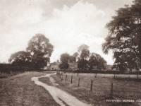 Footpath, Morden Village