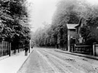 Whitford Lane, Mitcham: View looking north