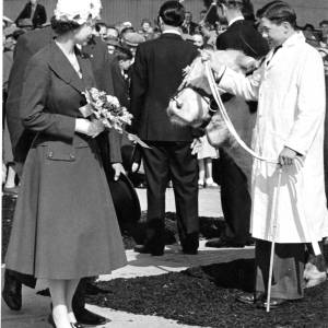 Queen Elizabeth II at the cattle market