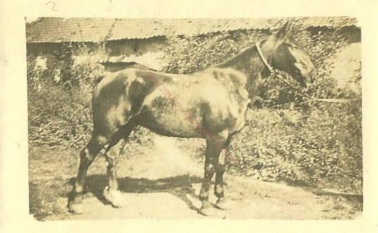 Charrington 1914 minature_2_5.jpg