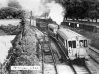 Train passing Morden Hall Park