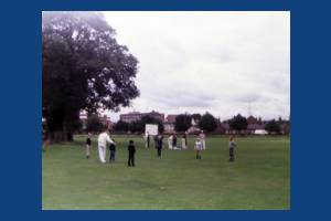 Cricket on the Cricket Green
