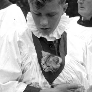 A choir boy - and cat - at the Holy Trinity annual pet blessing