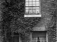 Wandle Bank, No.9, Colliers Wood