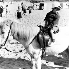 Donkey Rides at Sandhaven South Shields