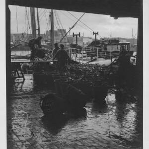482 - Three men emptying basket of fish on to trestle table; harbour in background