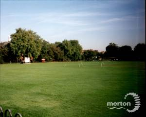 Cricket Green, Mitcham:  The Pitch