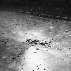 Bomb Damage North Marine Park