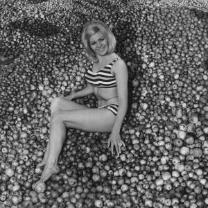 036 - Diane Green (Marco) sitting on pile of apples