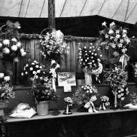 Southport Flower Show Exhibit in 1925