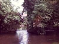 Wandle from Bishopsford Road Bridge