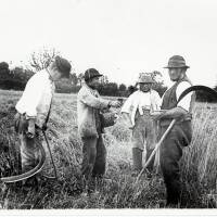 Agriculture and farming images