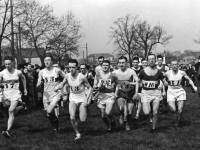 London to Brighton relay race
