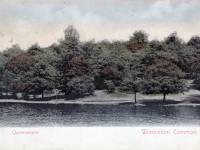 Queensmere, Wimbledon Common