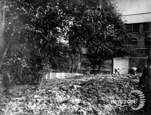 Chuter's Mill