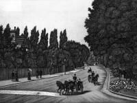 Wimbledon Hill Road seen fromThomson's Nursery  Wimbledon