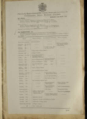 Routine Orders - June 1918 - April 1919 - Page 265