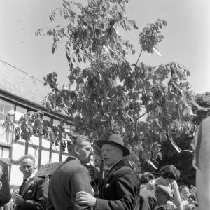 Holding an Oak Branch Aloft at Fownhope Flower Walk, 1960