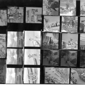 253-3 - Contact prints
