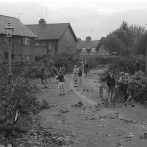 268 - Groups of children in street where tree has come down