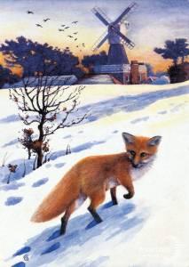 Fox near the windmill, Wimbledon Common