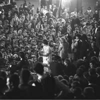 Jagger in the Crowd