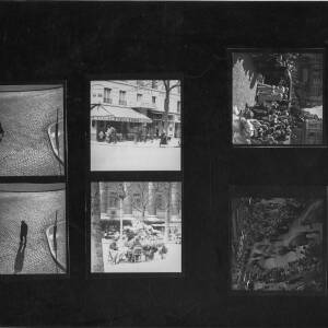 297 - Collection of contact prints