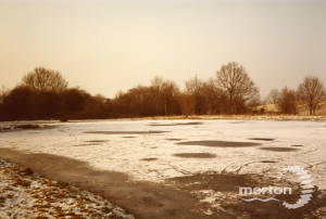 Frozen pond, west side of Mitcham Common, Mitcham