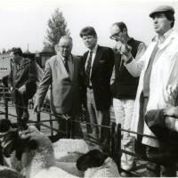 Ross Gazette photographs September 1986