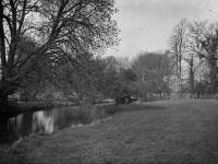 Morden Hall Park: View of the River Wandle below the Snuff Mill