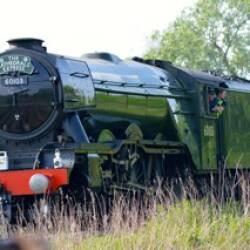 Flying Scotsman in Herefordshire
