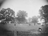 Queen Victoria's Golden Jubilee Celebrations
