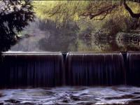 Morden Hall Park, Morden: Weir