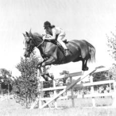 1949 Contestant in the Open Juvenile Show Jumping Class at the Gymkhana