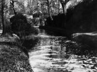 Morden Hall Park and the River Wandle, Morden
