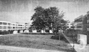 Eastfields Estate: Mitcham
