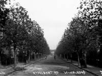 Ethelbert  Road, Wimbledon