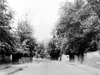 Road leading from Mitcham Station to Wandle Bridge