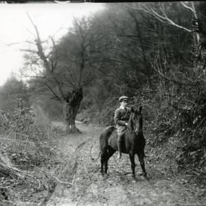 G36-008-02 Boy on pony in wooded lane.jpg