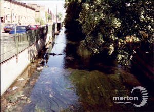 The River Wandle, Merton
