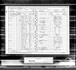 1891 Census - 22 West Place, Wimbledon Common