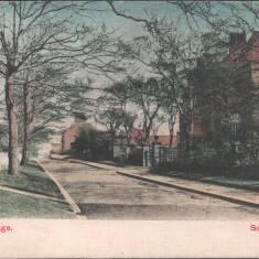 Westoe Village